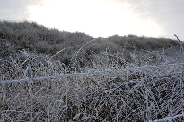 lakens_winter