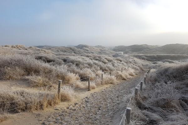 lakens_winter1